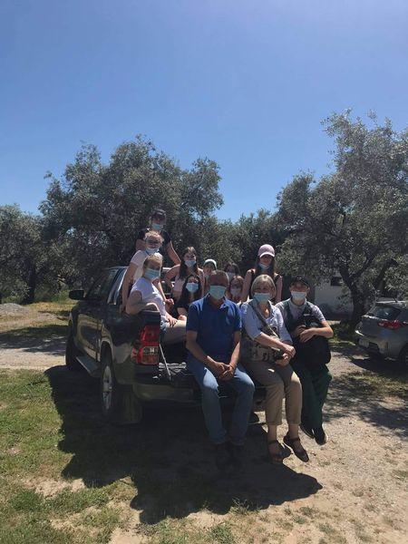W gajach oliwnych, czyli uczniowie na praktyce w Grecji.
